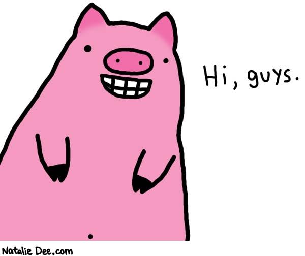 hi-pig